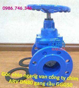 goc-nhin-ngang-van-cong-ty-chim-arv-dn80-gang-cau-ggg50
