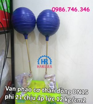 van-phao-co-than-dong-dn15-phi-21-chiu-ap-luc-12-kg-cm2