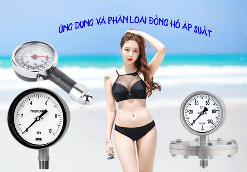 Ứng dụng và phân loại đồng hồ áp suất-hakura.vn