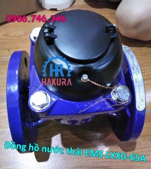 Đồng hồ nước thải EMS LXXG 65A