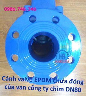 canh-valve-epdm-chua-dong-van-cong-ty-chim-dn80