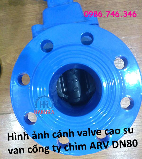 Hình ảnh cánh valve cao su của van cổng ty chìm ARV DN80