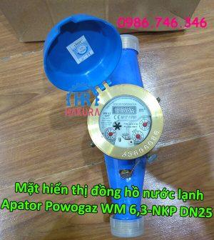 Mặt hiển thị đồng hồ nước lạnh Apator Powogaz WM 6,3-NKP DN25