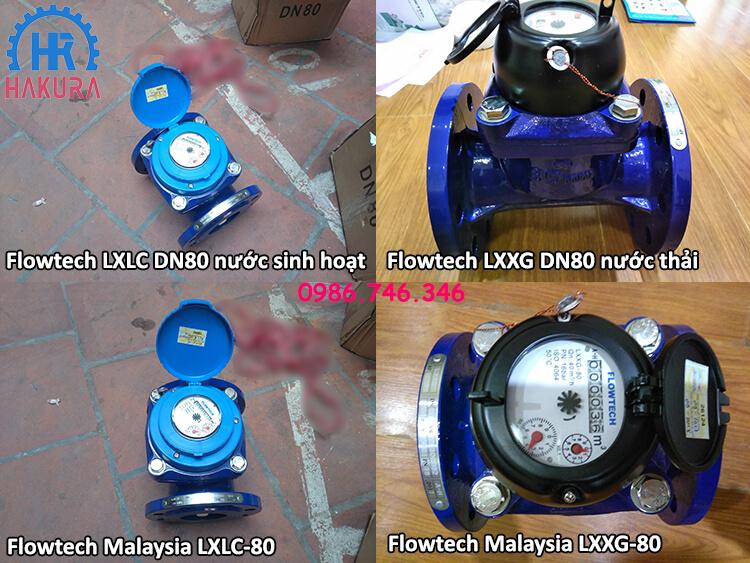 Đồng hồ đo nước Flowtech Malaysia cho các công trình nhà máy, khu công nghiệp