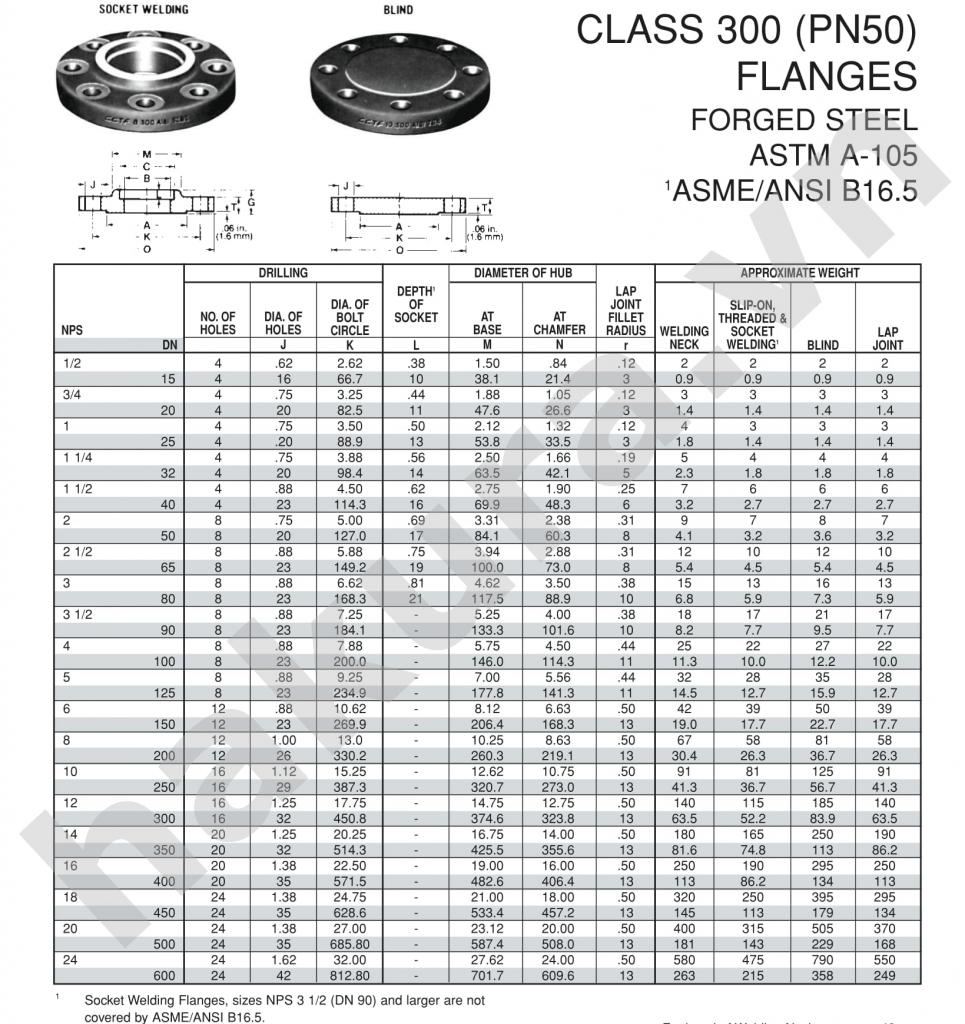 Catalogue thông số kỹ thuật mặt bích thép không gỉ hàn cổ Asi class300-hakura.vn-ảnh 1
