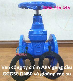 Van cổng ty chìm ARV gang cầu GGG50 DN80 và gioăng cao su