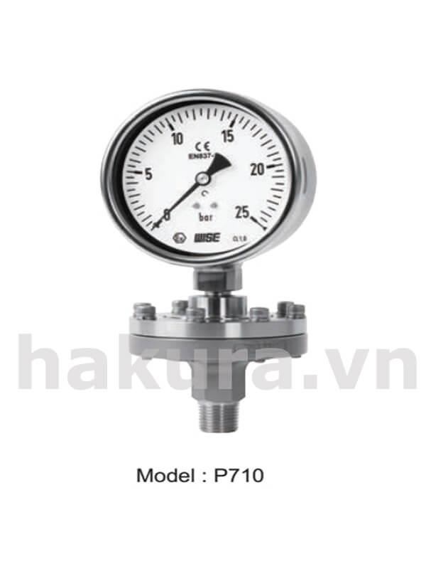 Đồng hồ đo áp suất Wise model p710