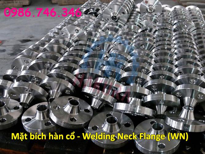 Mặt bích là gì? Mặt bích hàn cổ Welding Neck Flange (WN)