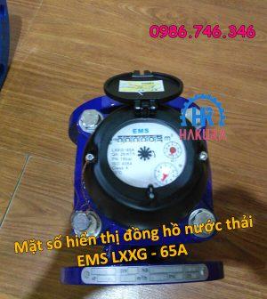 Mặt số hiển thị đồng hồ nước thải EMS LXXG 65A