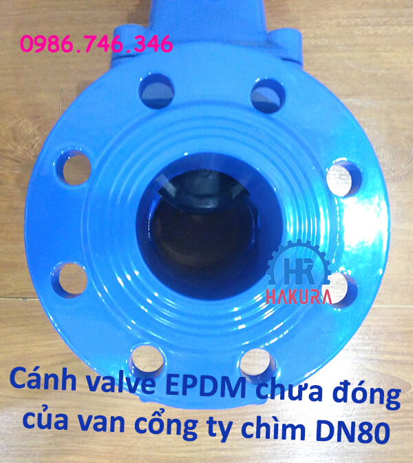 Cánh valve EPDM chưa đóng của van cổng ty chìm DN80